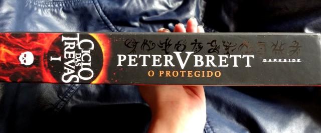 Livro O Protegido DarkSide Books
