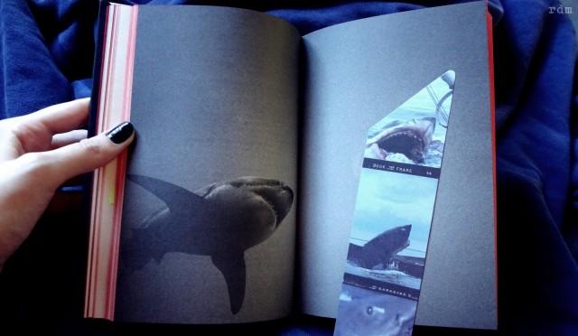Dentro do livro